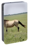 It's A Horse Of  Course Portable Battery Charger