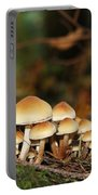It's A Small World Mushrooms Portable Battery Charger
