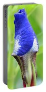 It's A Wrap - Iris Bud Portable Battery Charger
