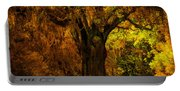 It's Not The Angel Oak Portable Battery Charger