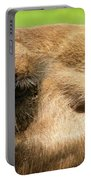 I've Got My Eye On You Portable Battery Charger