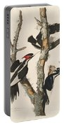Ivory-billed Woodpecker Portable Battery Charger