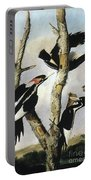 Ivory-billed Woodpeckers Portable Battery Charger