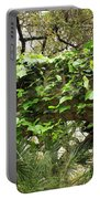 Ivy-covered Arch At The Alamo Portable Battery Charger