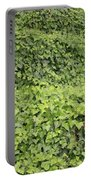 Ivy-covered Hill Portable Battery Charger
