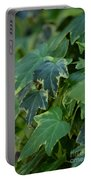 Ivy Greens Portable Battery Charger