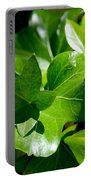 Ivy In Sunlight Portable Battery Charger