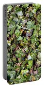 Ivy Ivy Ivy Portable Battery Charger