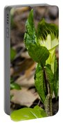 Jack In The Pulpit Portable Battery Charger by LeeAnn McLaneGoetz McLaneGoetzStudioLLCcom