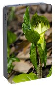 Jack In The Pulpit Portable Battery Charger