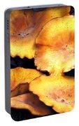 Jack O Lantern Mushrooms Portable Battery Charger