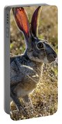 Jack Rabbit Portable Battery Charger