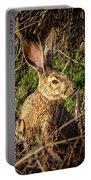 Jack Rabbit Portable Battery Charger