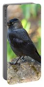 Jackdaw 1 Portable Battery Charger