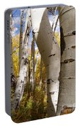 Jackson Hole Wyoming Portable Battery Charger
