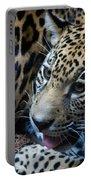 Jaguar Cub Portable Battery Charger