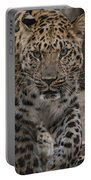 Jaguar On The Prowl Portable Battery Charger