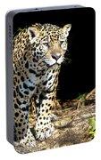 Jaguar Stare Portable Battery Charger