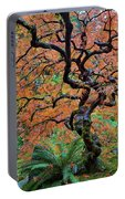 Japanese Garden Lace Leaf Maple Tree In Fall Portable Battery Charger