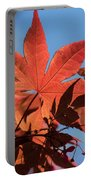 Japanese Maple In Sunlight Portable Battery Charger