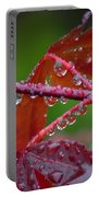 Japanese Maple On A Rainy Day Portable Battery Charger