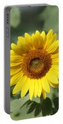 Jarrettsville Sunflowers - The Star Of The Show Portable Battery Charger