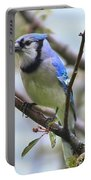Jay In June Portable Battery Charger