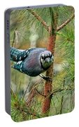 Jay Painterly Portable Battery Charger
