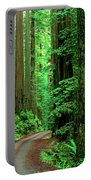Jedediah Smith Redwoods                            Portable Battery Charger