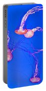 Jellyfish World Portable Battery Charger