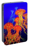 Jellys4 Portable Battery Charger