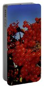 Jewels Of Autumn 4 Portable Battery Charger