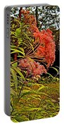 Joe-pye-weed Near Schroon River In New York Portable Battery Charger
