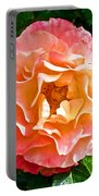 Joseph's Coat Rose At Pilgrim Place In Claremont-california  Portable Battery Charger