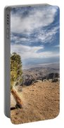 Joshua Tree 39 Portable Battery Charger