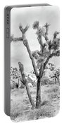 Joshua Tree Branches Portable Battery Charger