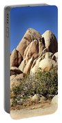 Joshua Tree Center Portable Battery Charger