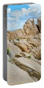 Joshua Tree Geology Portable Battery Charger