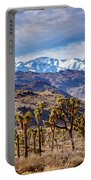Joshua Tree National Park 2 Portable Battery Charger