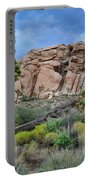 Joshua Tree National Park Summer Evening Portable Battery Charger