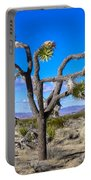 Joshua Tree National Park Winter's Day Portable Battery Charger