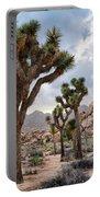 Joshua Tree Summer Monsoon Portable Battery Charger