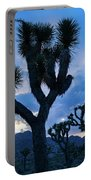 Joshua Tree Sunset Skies Portable Battery Charger