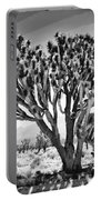 Joshua Trees Bw Portable Battery Charger