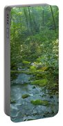Joyce Kilmer Memorial Forest Portable Battery Charger