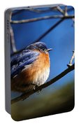 Juicy Male Eastern Bluebird Portable Battery Charger