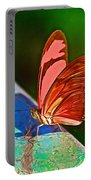 Julia Heliconian Butterfly In Iguazu Falls National Park-brazil Portable Battery Charger