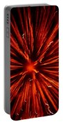 July 4 Fireworks Portable Battery Charger