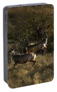 Jumping Deer Portable Battery Charger