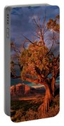 Juniper And Storm Back Of Zion National Park Utah Portable Battery Charger